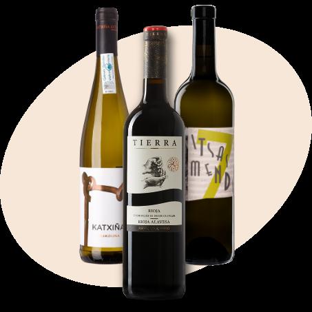 Pack Itsasmendi Basque wine